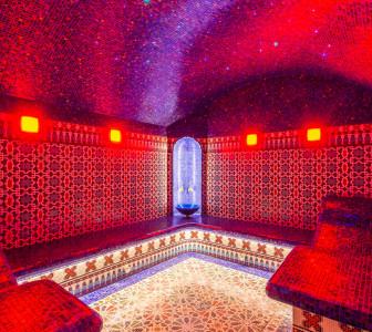 Private House Russia st-peterburg - hammam - DSC_7304-2500